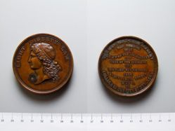 Bronze Medal for the College of the City of New York
