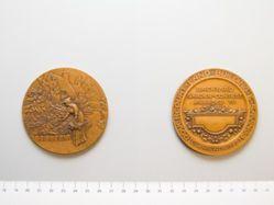 Dovercourt Backyard Garden Medal