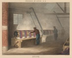 Progress of Cotton: # 11 - Dying