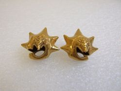 Pair of Star Ear Ornaments