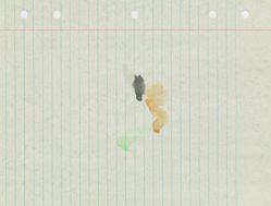 Loose Leaf Notebook Drawings - Box 7, Group 10