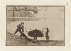 Pedro Romero matandó a toro parado (Pedro Romero Killing the Halted Bull), Plate 30 from La tauromaquia