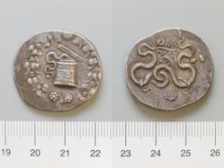 Cistophorus from Tralles