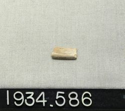 Glass Rim Fragment