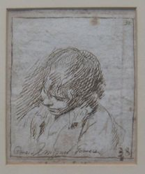 Head of a Young Man (formerly Portraits of men)