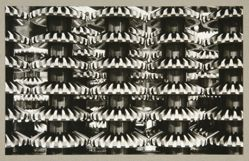Gears (detail of the AMO automobile), from The Alexander Rodchenko Museum Series Portfolio, Number 1: Classic Images