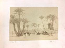 Beduínský stan, Biskra