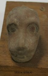 Head of a Dog, fragmentary