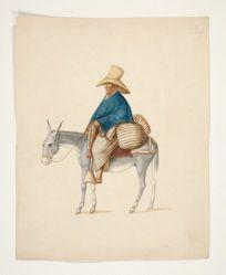 Man on Mule with Loaded Saddlebacks