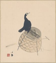 Cormorant on a Basket