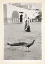Jaipur, India, 1956
