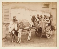 Charrette transportant des femmes arabes (Cart Carrying Arab Women)