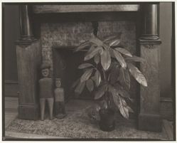 Untitled (Rubber Plant, Fireplace)