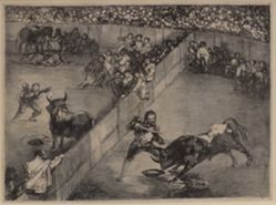Bullfight in a Divided Ring
