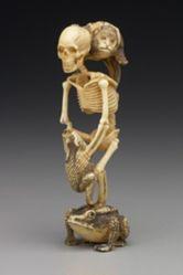Skeleton and Its Entourage