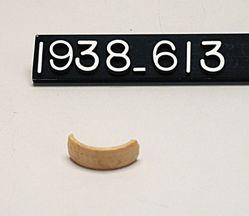 Bone Ring Fragment