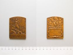 Bronze medal of the army of France