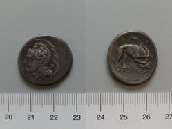 Didrachm from Velia