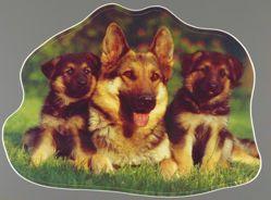 German Shepherds Sticker, from the Exit Art portfolio Trance/Borders