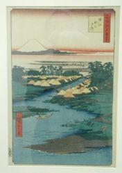 Horie and Nekozane: One Hundred Views of Edo