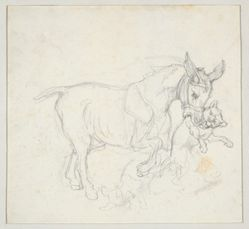 Donkey Holding Dog in its Mouth (recto); Study of Deer Chased by Dogs, Doe's Head (verso)
