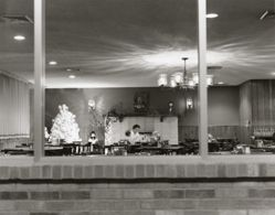 Window view of dining room, South Denver, Colorado