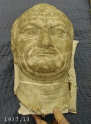 Head of Vespasian after a Roman portrait type of the 1st Century A.D.