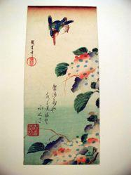 Kingfisher and Hydrangeas