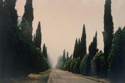 Castello, from the portfolio Toscana