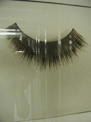 False Eyelash, from the series: one of 20 in Objects of Beauty series