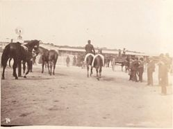 [Men on Horseback], from the album [Sydney, Australia]