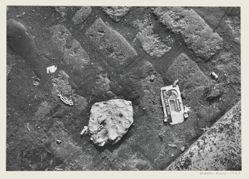 New York Street Trash, 1963