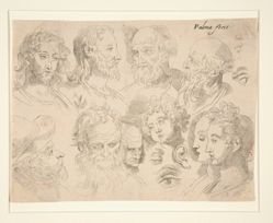 Studies of Nine Heads