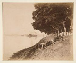 Avenue, village, et pyramides pendant la Crue du Nil (Avenue, Village, and Pyramides during the Flooding of the Nile)