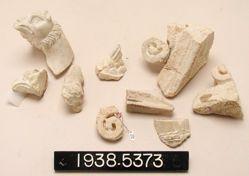 Fragments of Sculptured Relief