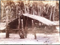 Devil House, Solomons