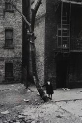 Helen Levitt, New York City (Two Boys, One Up a Tree)