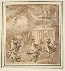 Cocks and Pigeons