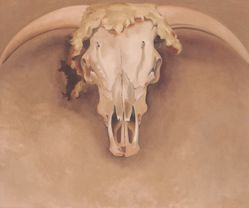 Bob's Steer Head