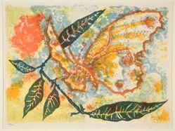 Papillon (Butterfly)