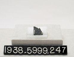 Plate Armor fragment