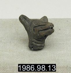 Fragment of Dog Head