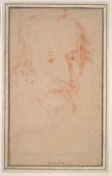 Portrait of Cardinal Sforza Pallavicino