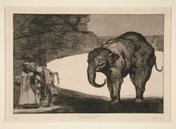 Disparate de bestia (Animal Folly), unnumbered plate from the series Los proverbios