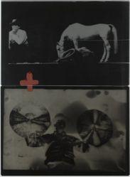 Iphigenia / Titus Andronicus