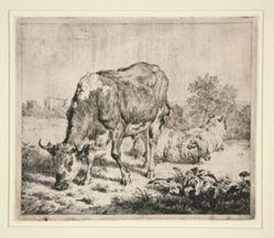 Le Boeuf Pie et les trois moutons