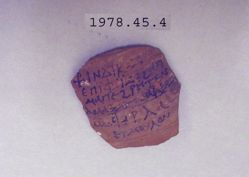 Ostracon (Etmoulon Ostrakon)